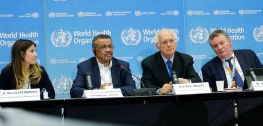 Coronavirus WHO emergency meeting: Why did WHO postpone emergency decision?