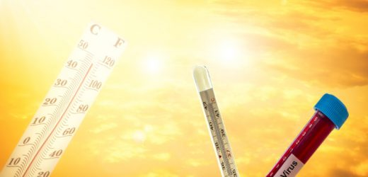Are summer temperatures weaken the Coronavirus pandemic? – Naturopathy Naturopathy Specialist Portal