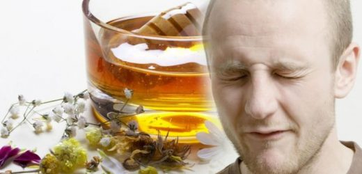 Hair loss treatment: A plant used in Ayurvedic methods proven to help with hair loss