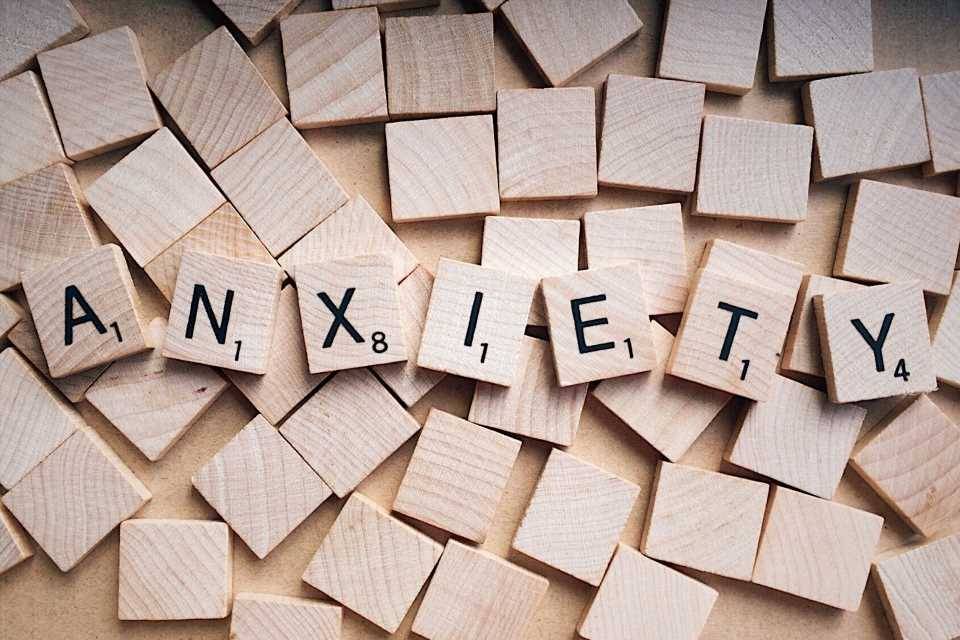 Survey finds US adults are most concerned about experiencing increased anxiety as a result of COVID-19