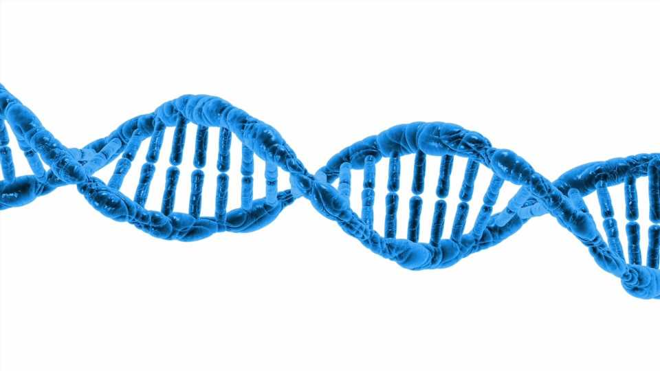 Study into DNA biology could impact future anti-cancer therapies
