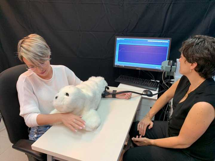 A furry social robot can reduce pain and increase happiness