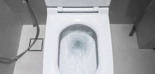 Don't flush the toilet with the lid up. Here's why