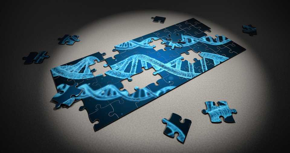 GTEx findings reveal genetic regulatory variation across tissues and cell types