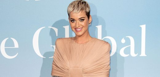 Katy Perry Poses in Nursing Bra, Postpartum Underwear 4 Days After Birth