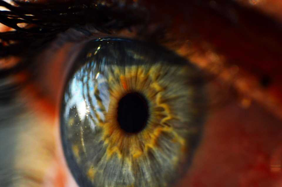 Outdated corneal donation policies prevent sight-restoring surgery