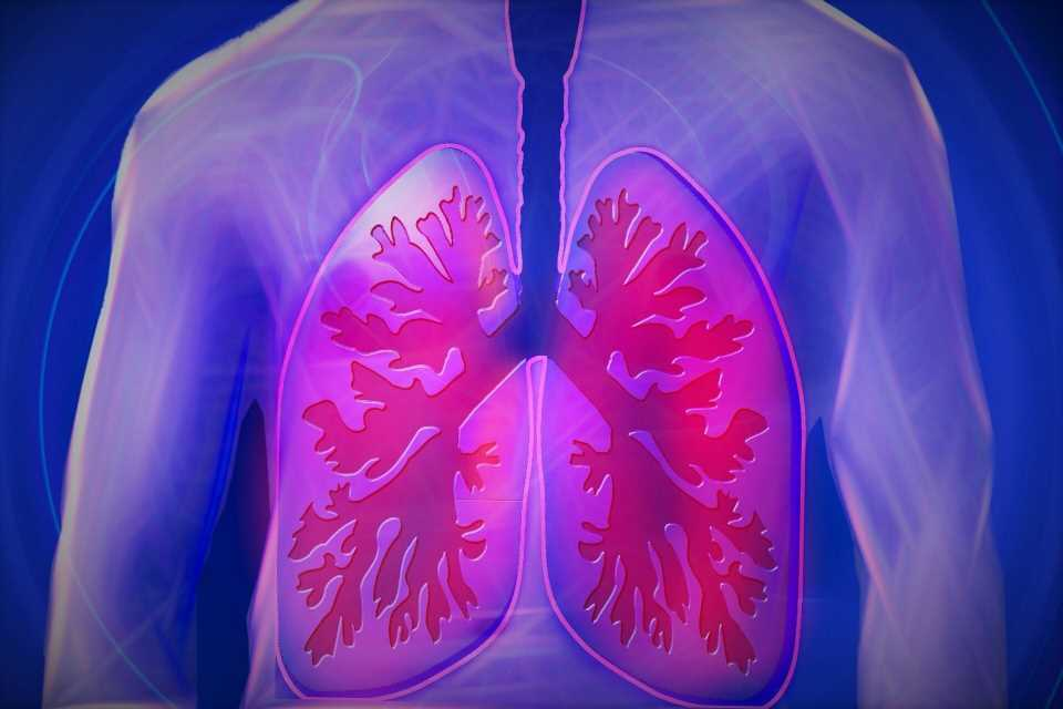 How vitamin E acetate might injure vapers' lungs