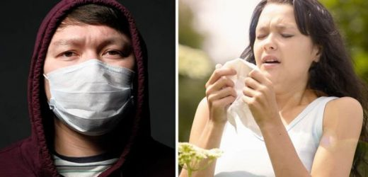 Coronavirus symptoms: What's the difference between hay fever and coronavirus?