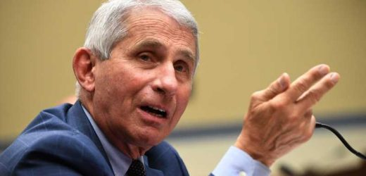 Why the Trump campaign has Dr. Fauci seeing red