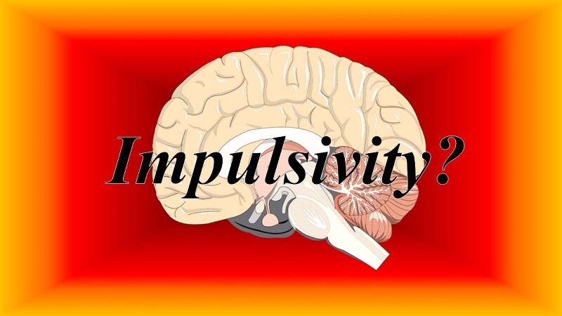 Stop using term 'impulsivity' to describe behavior or personality traits, psychologists say