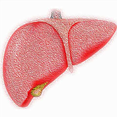 Liver condition identified in patients using urine samples
