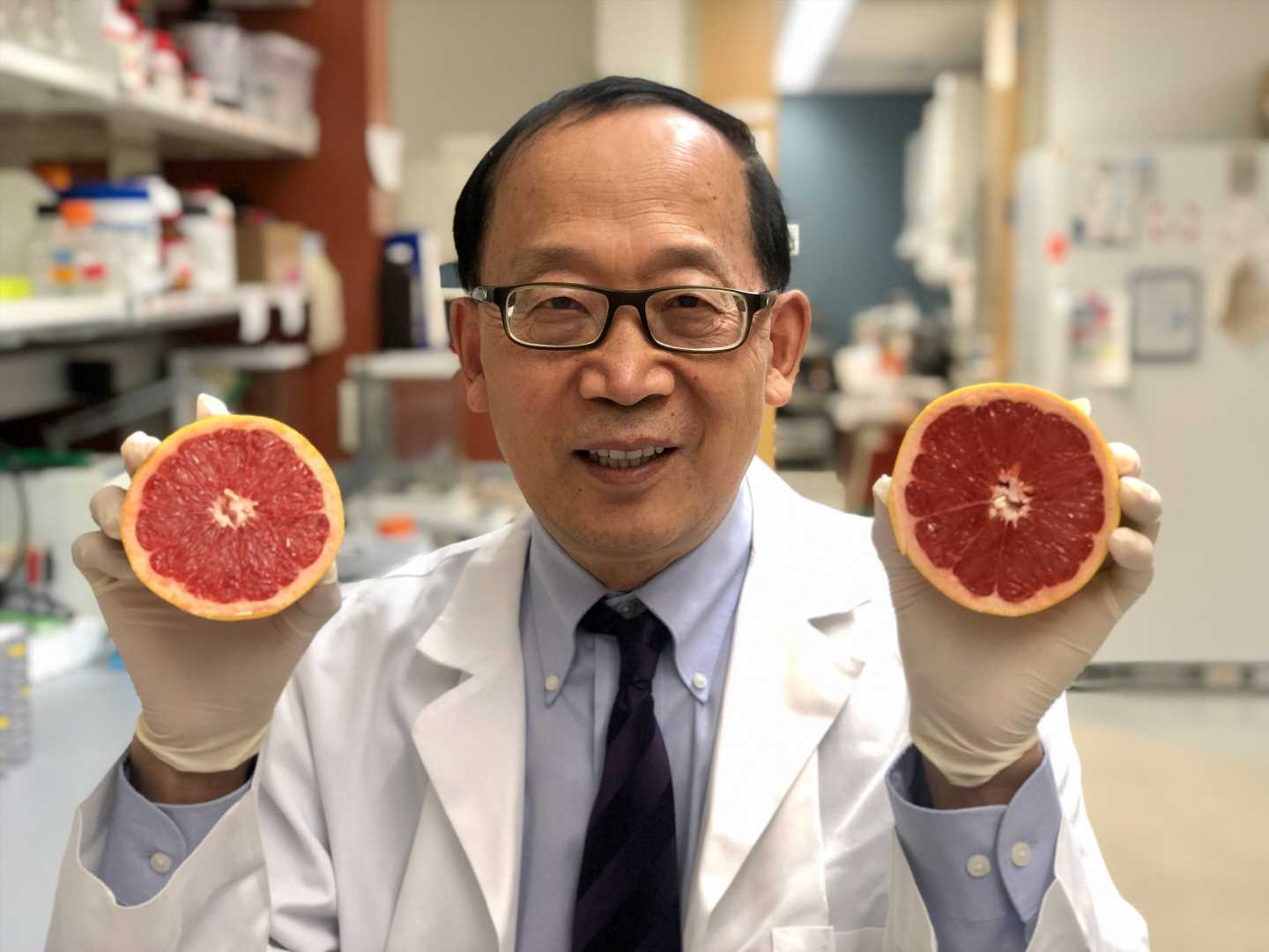 Researcher uses fruit for less toxic drug delivery