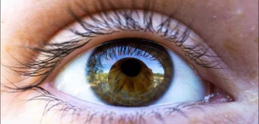 New gene therapy developed for treating eye disease that leads to a progressive loss of vision