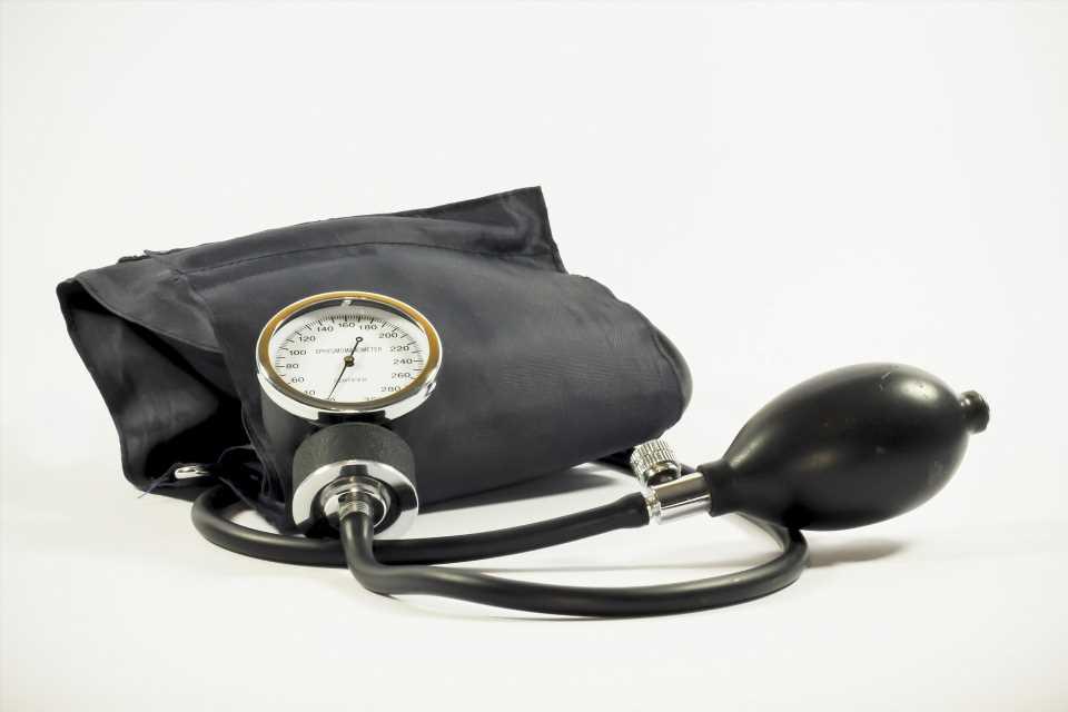 The longevity gene mammalian Indy (mINDY) is involved in blood pressure regulation