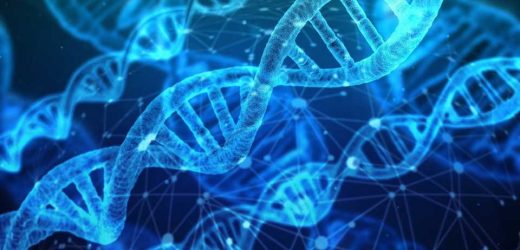 DNA discovery could advance degenerative disease treatments