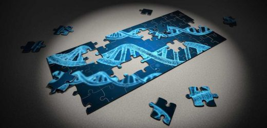 Rare genetic syndrome identified, caused by mutations in gene SATB1