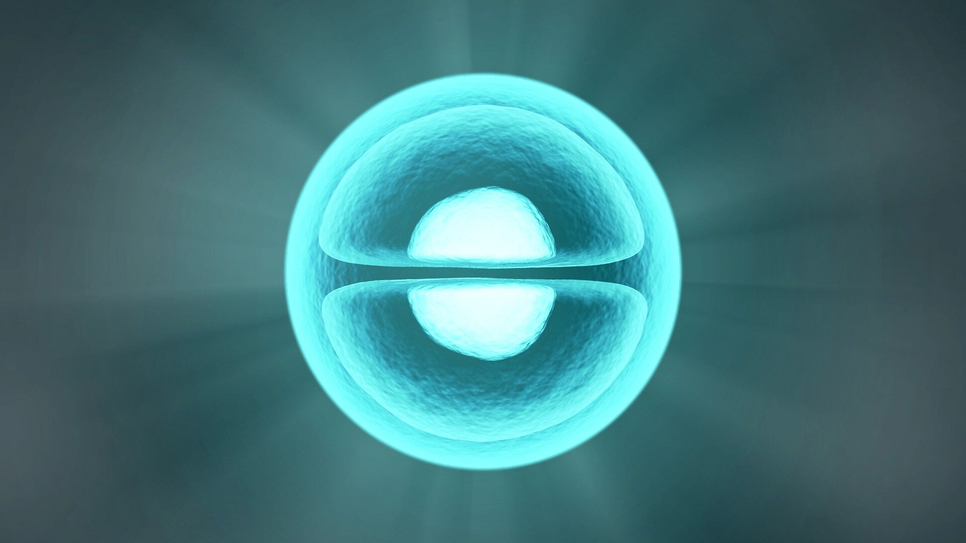 Bio-based membranes with ocular stem cells to treat corneal disorders