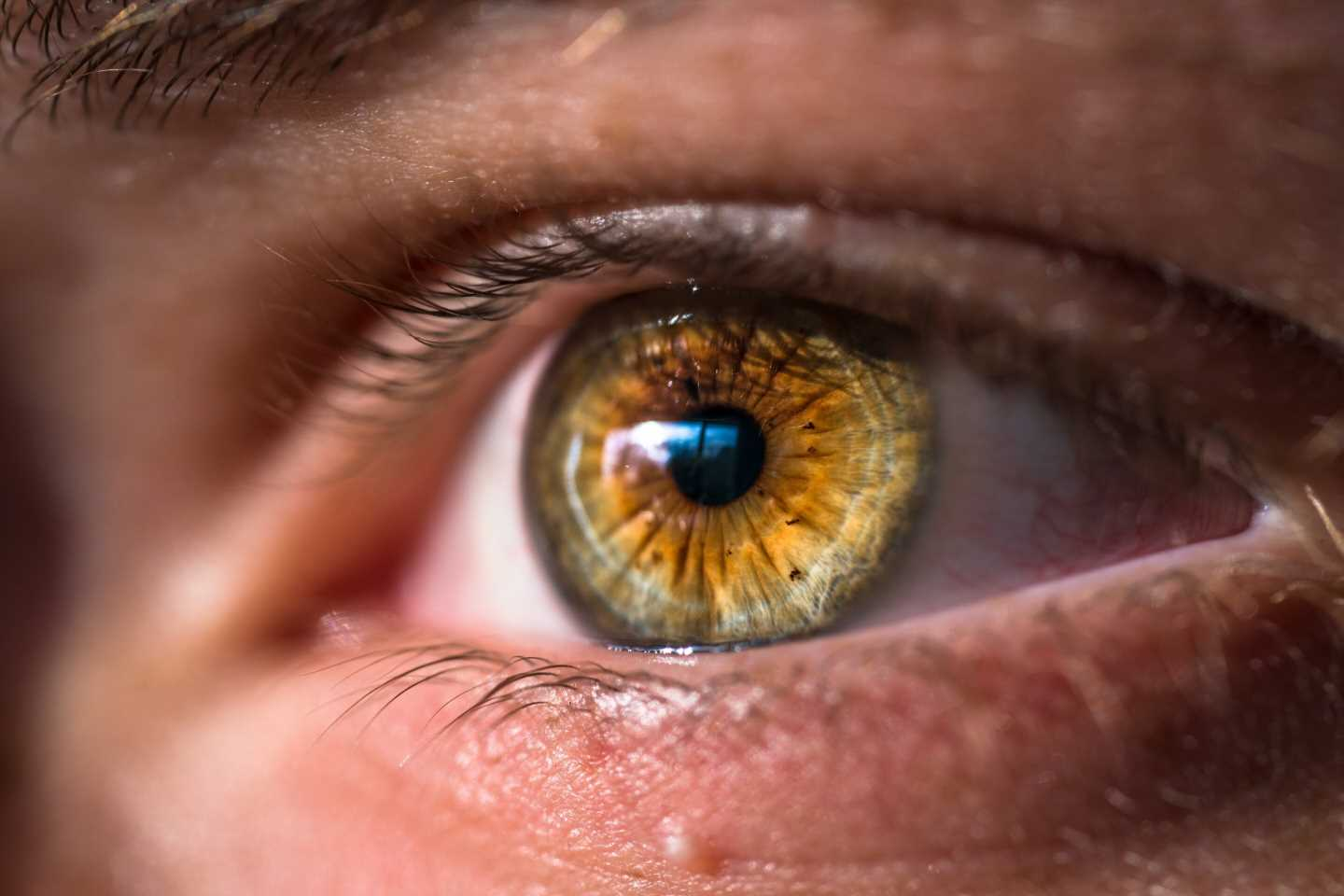 Discovery of a new drug for diabetic retinopathy