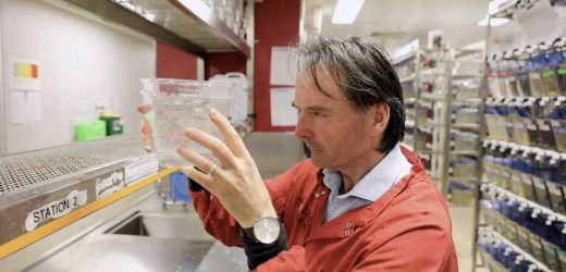 Novel protein could reverse severe muscle wasting in disease, aging and trauma