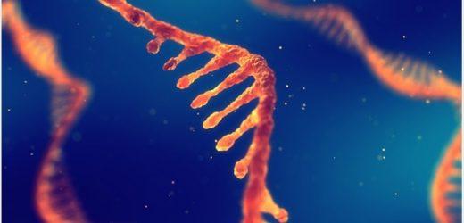 What is Sugar-Coated RNA?
