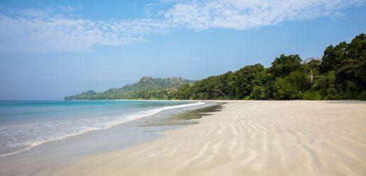 Deadly hospital superbug found on a remote island beach