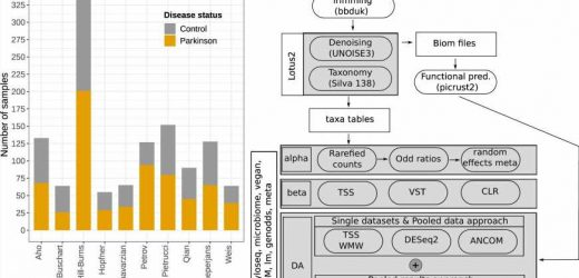 Defining the Parkinson's microbiome strengthens links to gut health