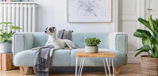 How To Organize Your Furniture For The Best Feng Shui