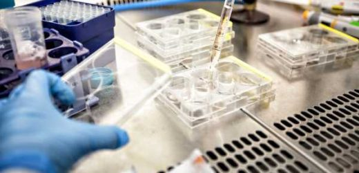 Personalized cancer vaccines for breast, pancreatic cancers show promise