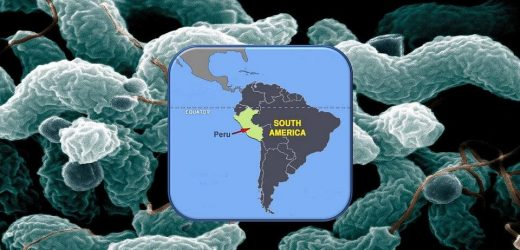 Researchers find cause of Guillain-Barre syndrome outbreak in Peru