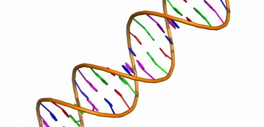 Exposure to lead can cause epigenetic changes even at relatively low levels