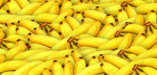 Low potassium levels linked to water balance disorder more prevalent in women
