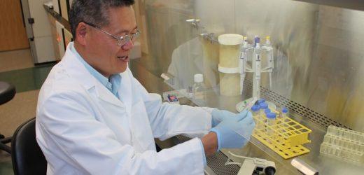 Novel immune checkpoints have applications for cancer, autoimmune disease treatment