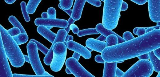 New framework establishes safe thresholds for antimicrobials