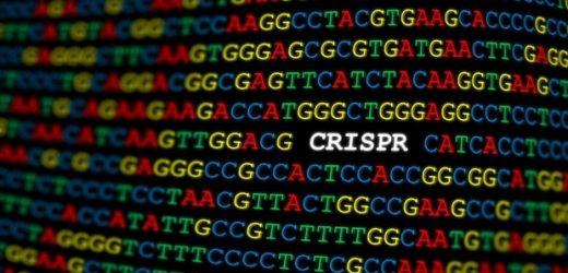 Researchers develop new method to make CRISPR gene editing more precise
