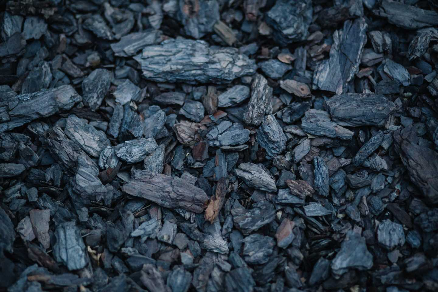 Cooking with coal or wood associated with increased risk of major eye diseases