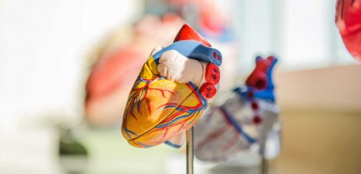 French firm makes first sale of artificial heart