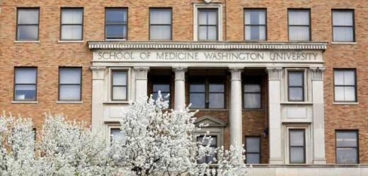 School of Medicine staff members honored with 2020, 2021 service awards