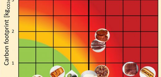 Individual dietary choices can add—or take away—minutes, hours and years of life