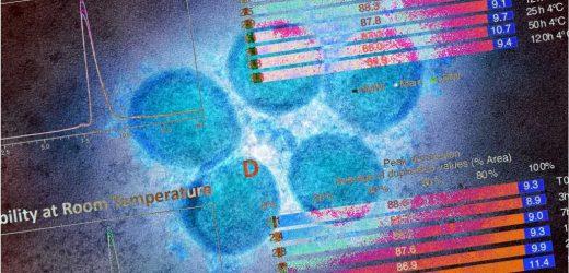 Next-gen COVID vaccine to make persistent neutralizing antibodies