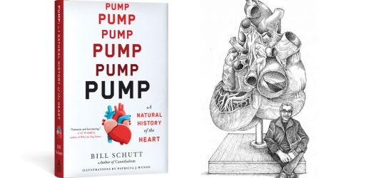 Read an excerpt from 'Pump: A Natural History of the Heart'