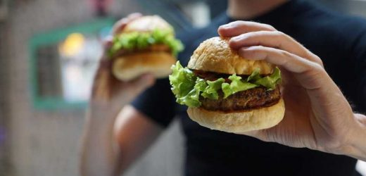 Study identifies mechanism by which nicotine withdrawal increases junk food consumption